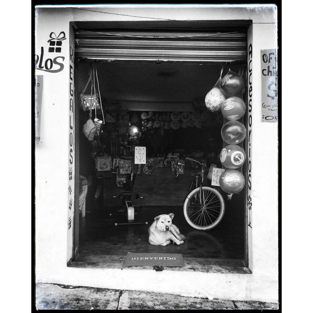 O Clotilde Richalet Szuch Street Photography 13 Web 1024x1024