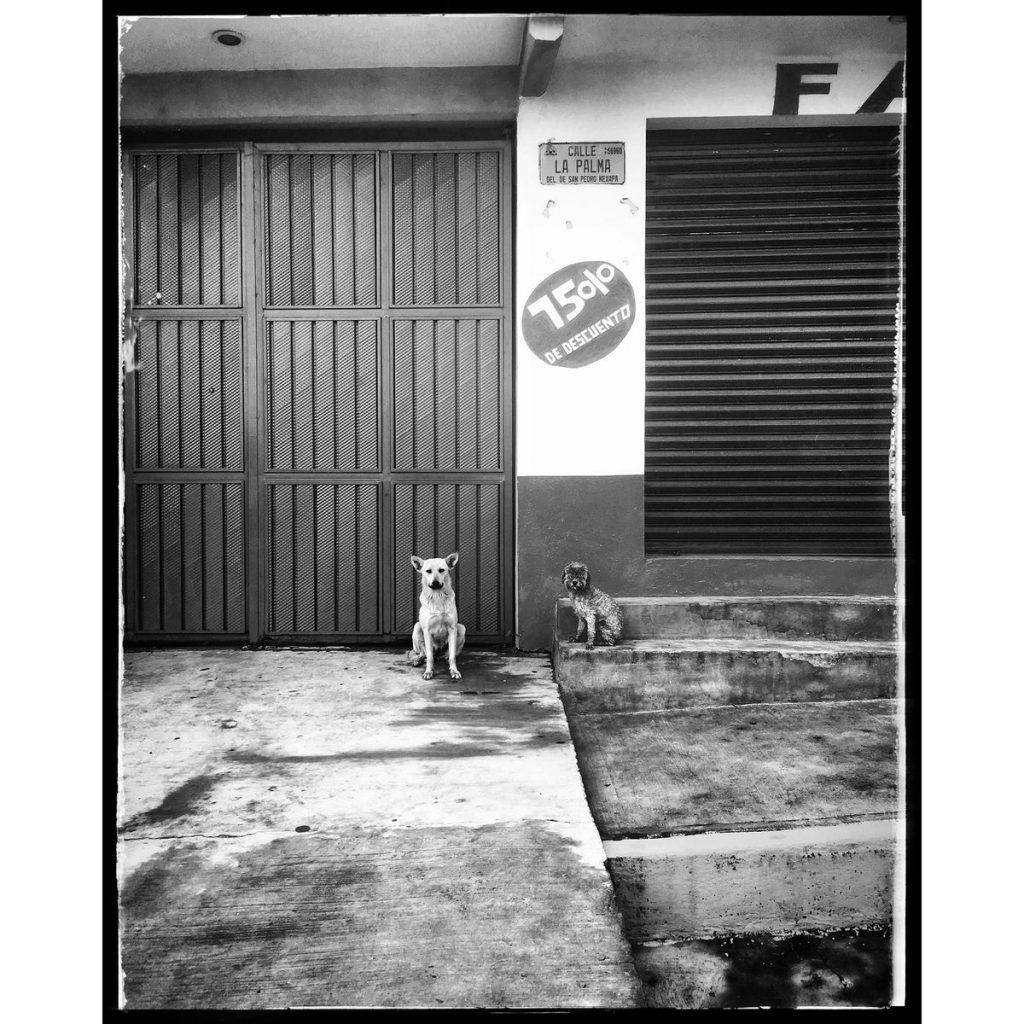 O Clotilde Richalet Szuch Street Photography 14 Web 1024x1024