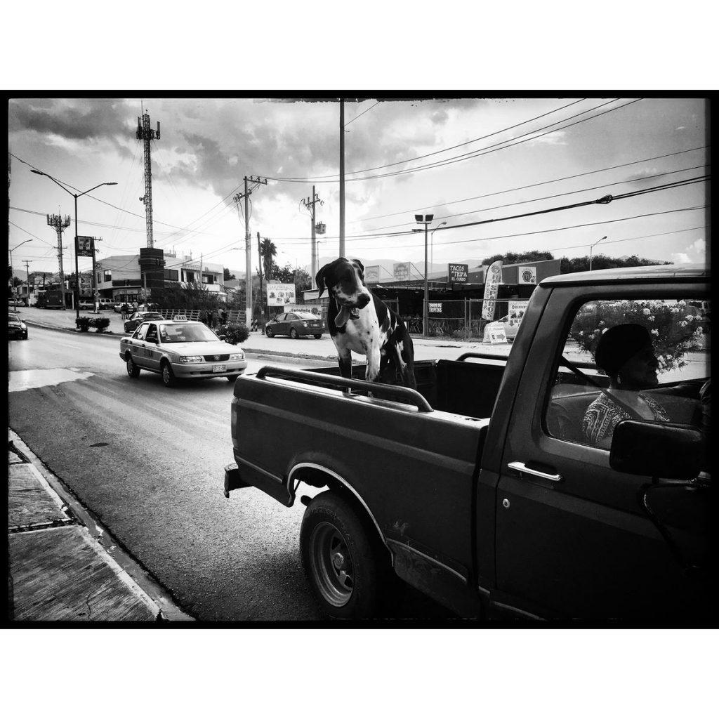 O Clotilde Richalet Szuch Street Photography 15 Web 1024x1024