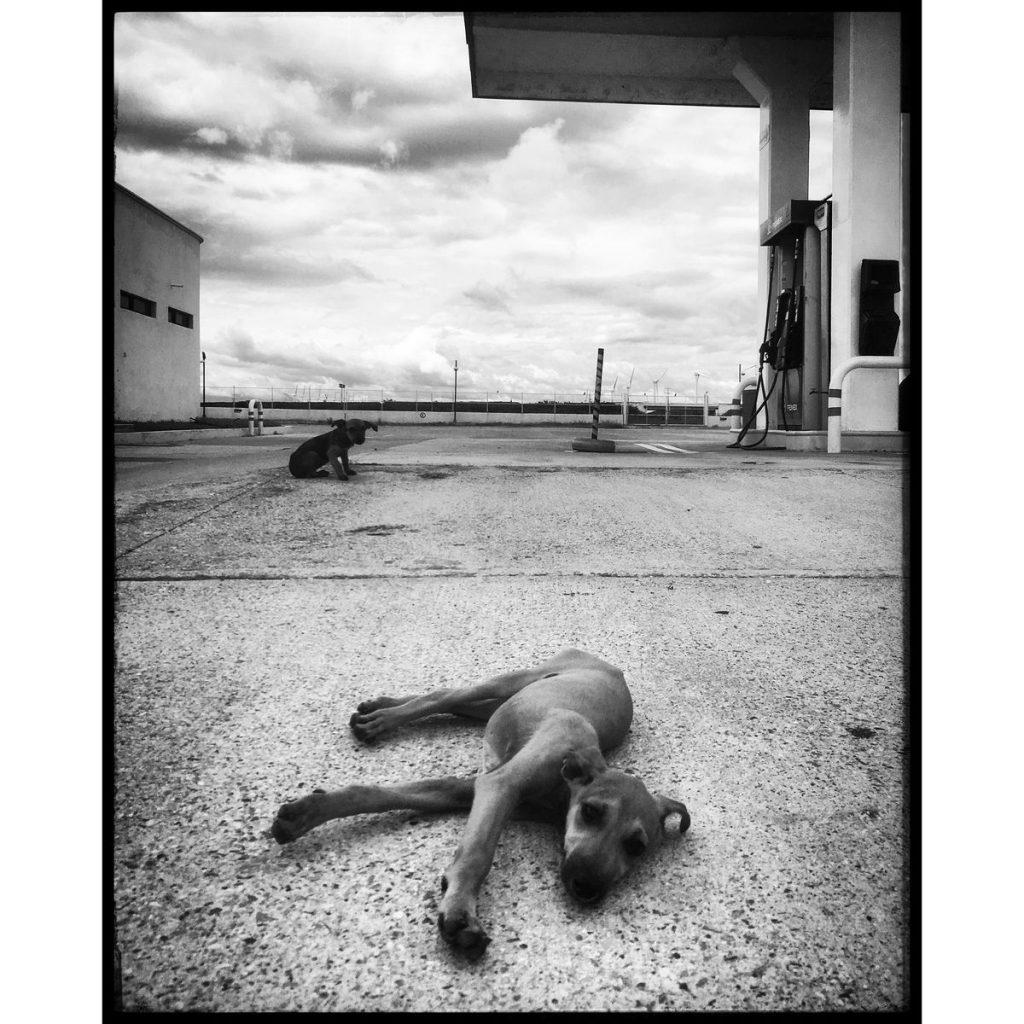 O Clotilde Richalet Szuch Street Photography 17 Web 1024x1024