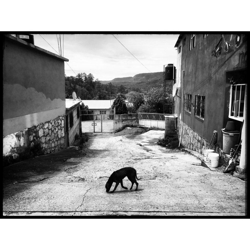 O Clotilde Richalet Szuch Street Photography 4 Web 1024x1024