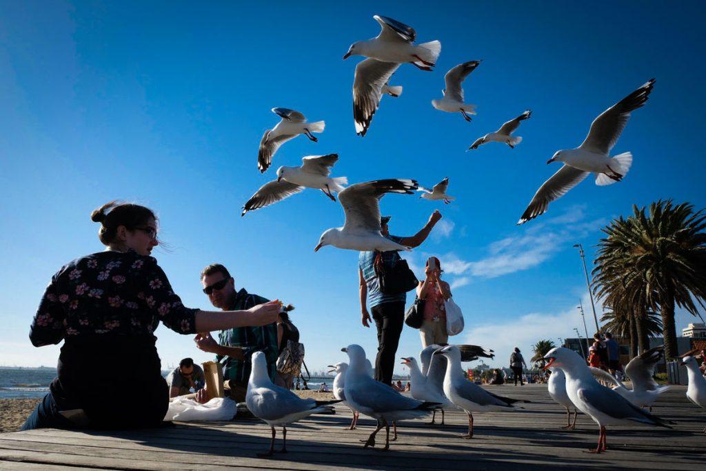 O Michael Zikaras Street Photography 1 Web 1024x683