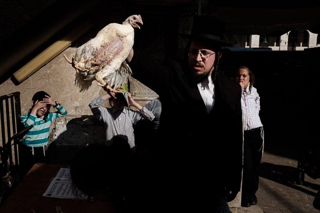 O Gabi Ben Avraham 1 1024x683