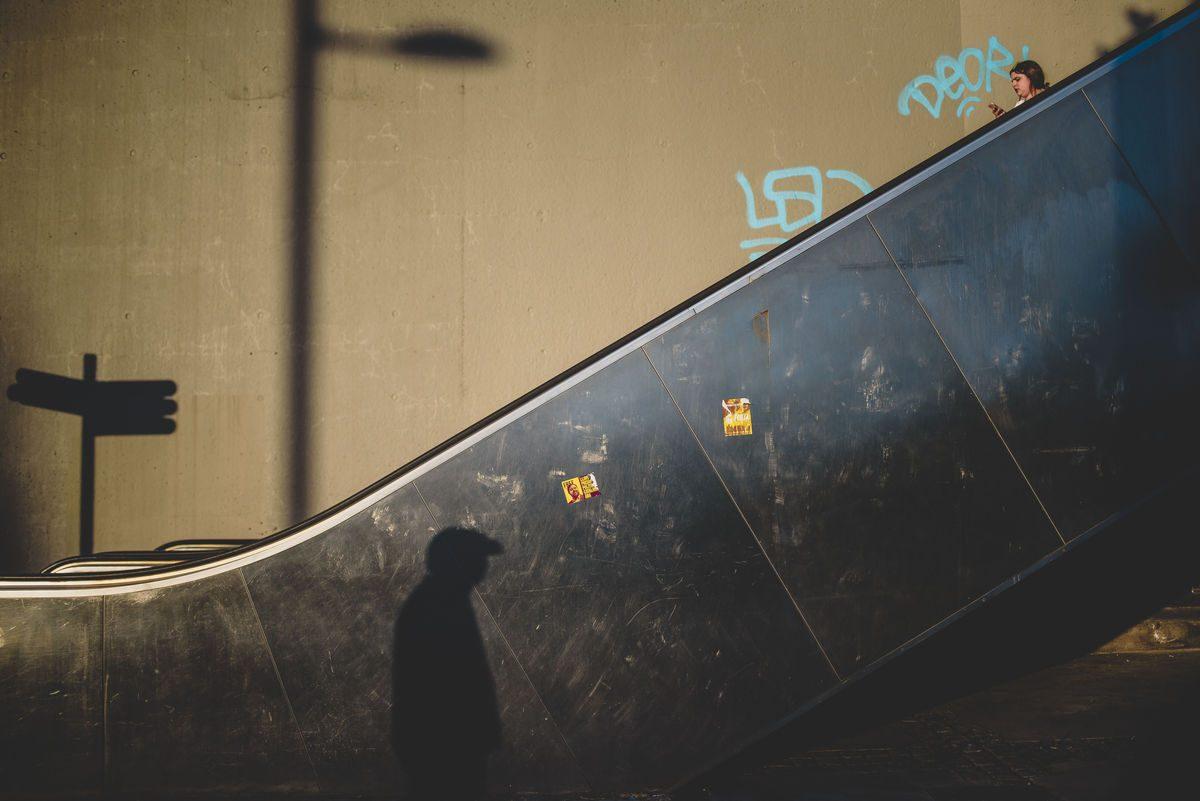 Lucas 7 Web 1200x801