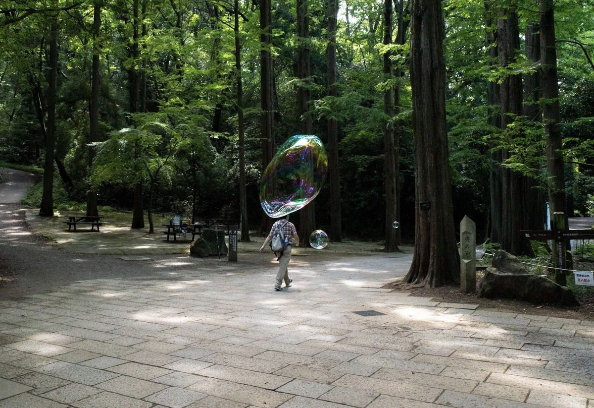 street photography soap bubble in the woods