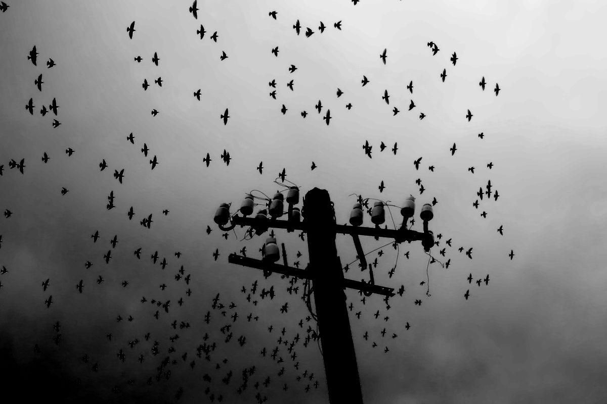 SOTIRIS LAMPROU 12 Street Photography 1200x800