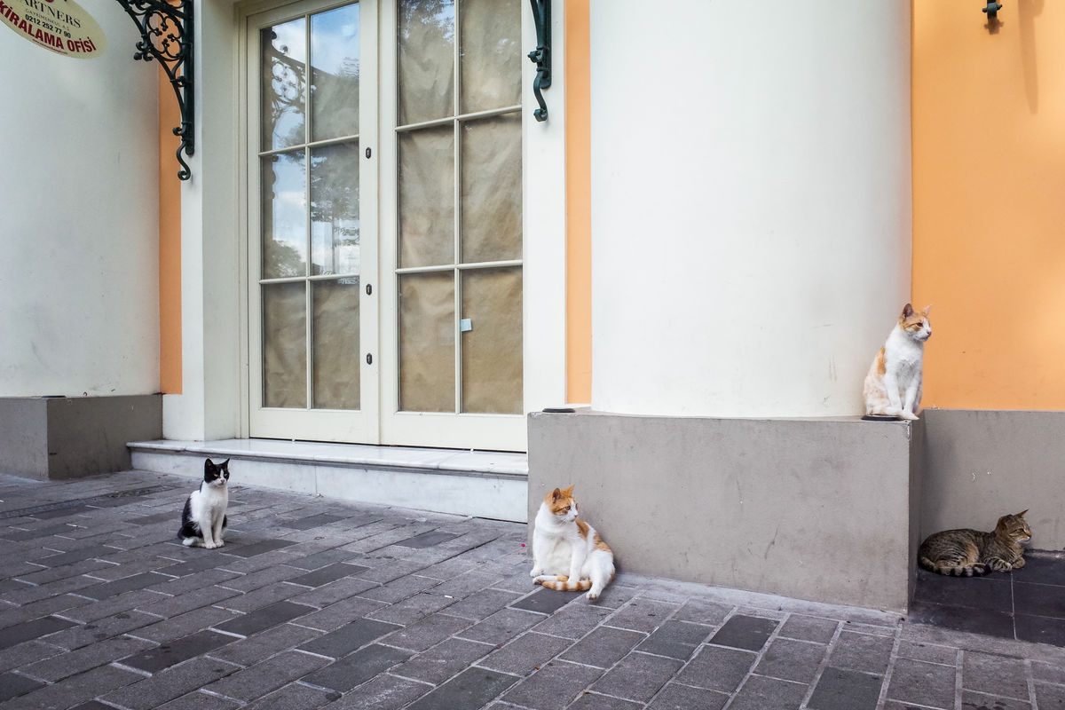 Benjamin Dupont 9 Street Photography