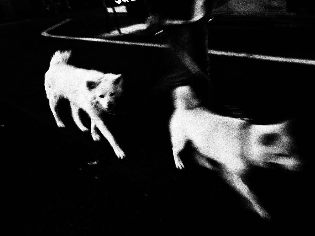 Ekin Küçük 11 Street Photography