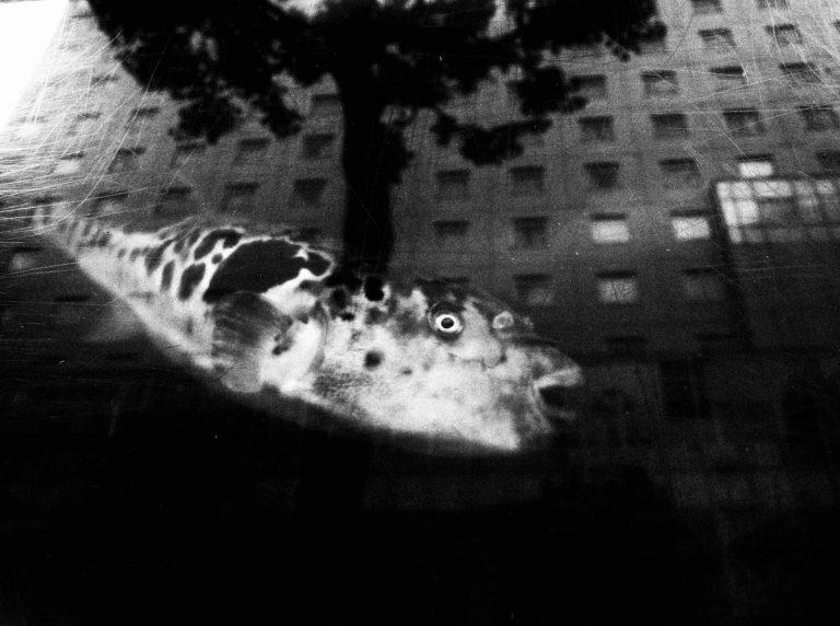 Ekin Küçük 6 Street Photography 768x572