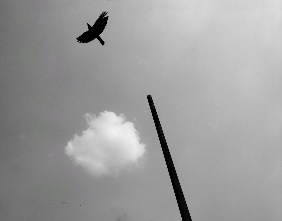 Ankit Kumar 11 Street Photography