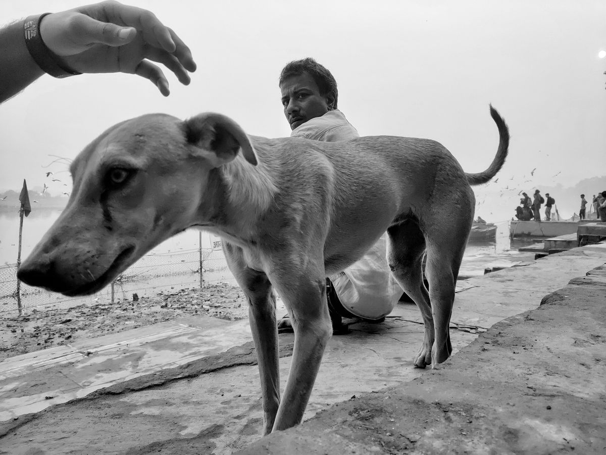 Ankit Kumar 8 Street Photography