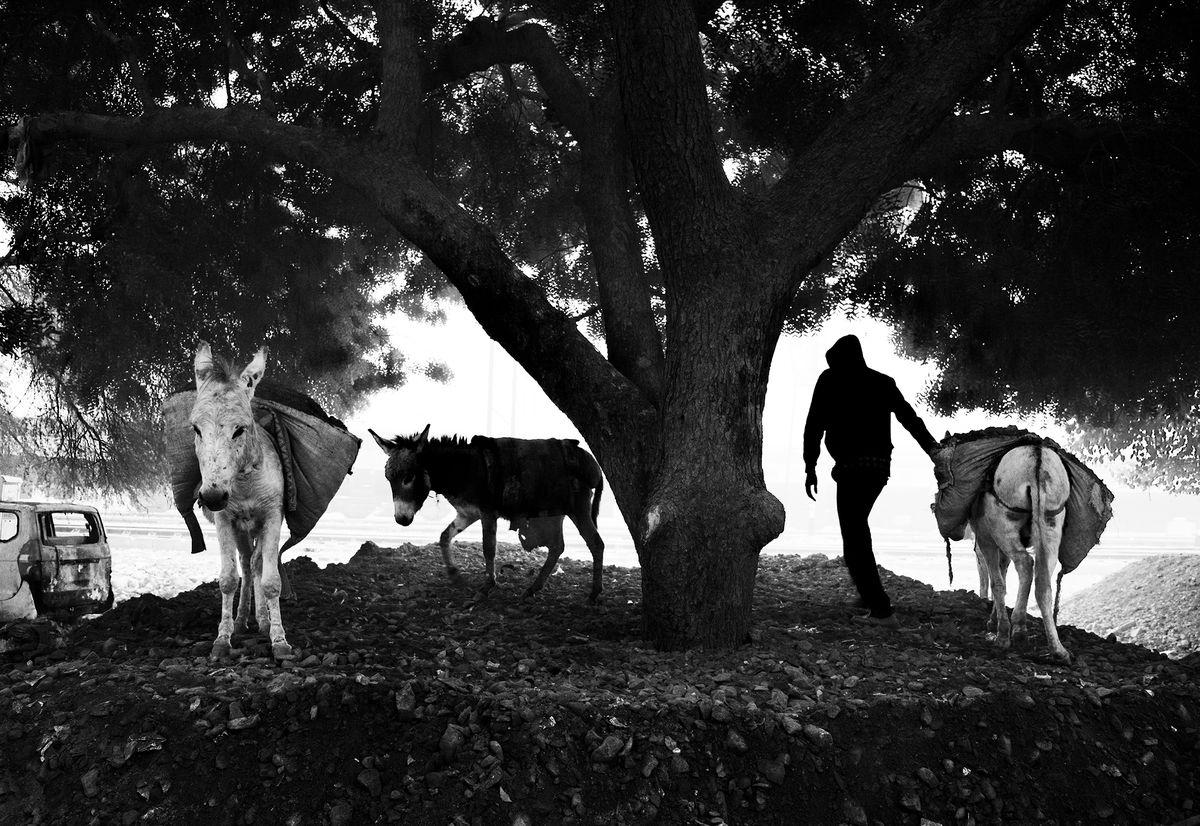 Sachin Chauhan 9 Street Photography