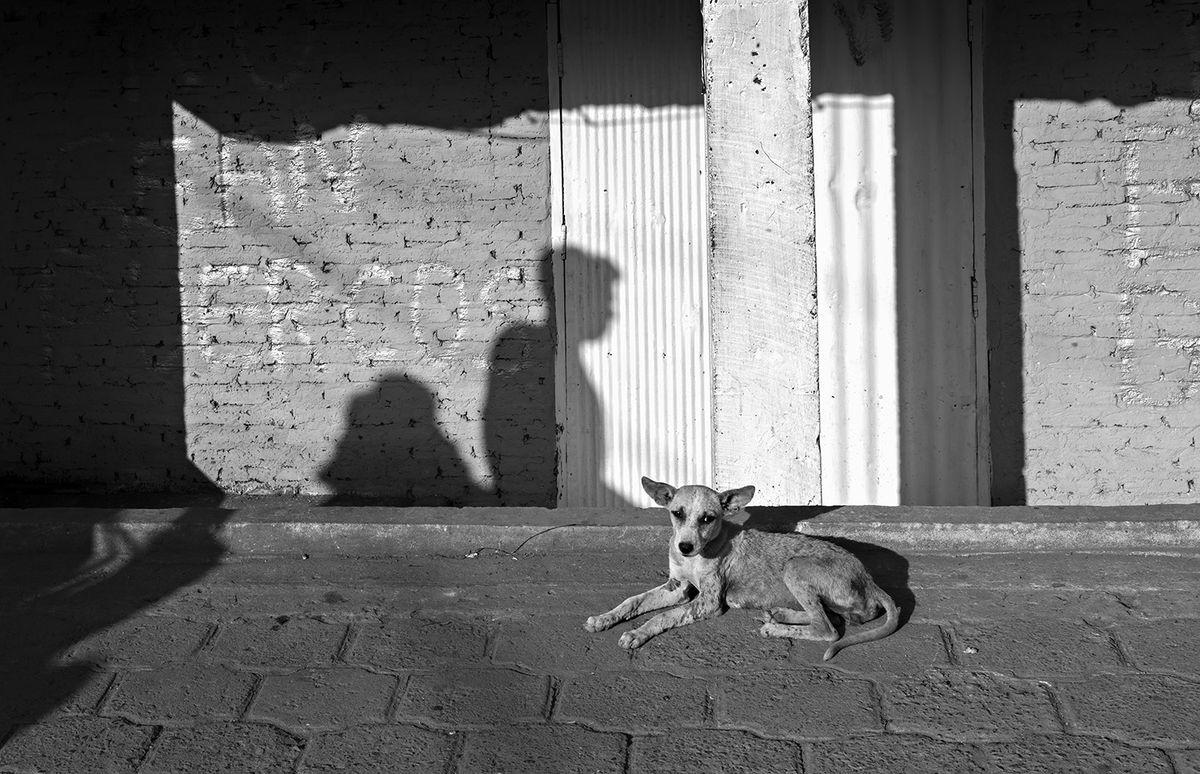 Pepe Hanze 2 Street Photography