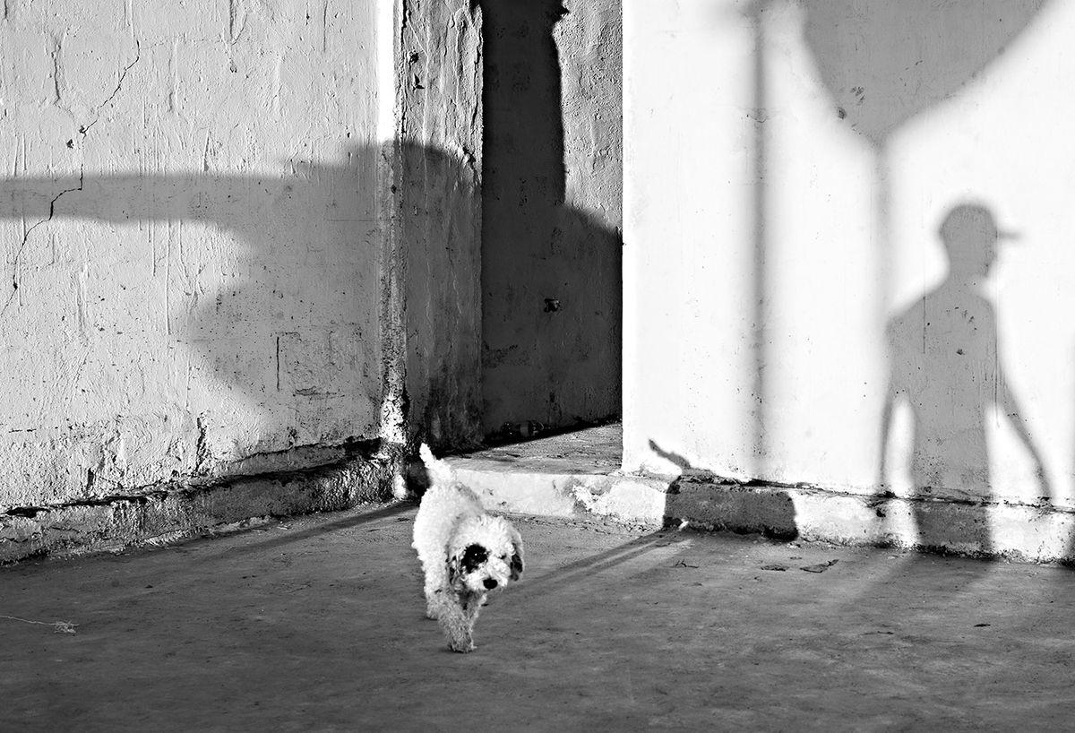 Pepe Hanze 8 Street Photography