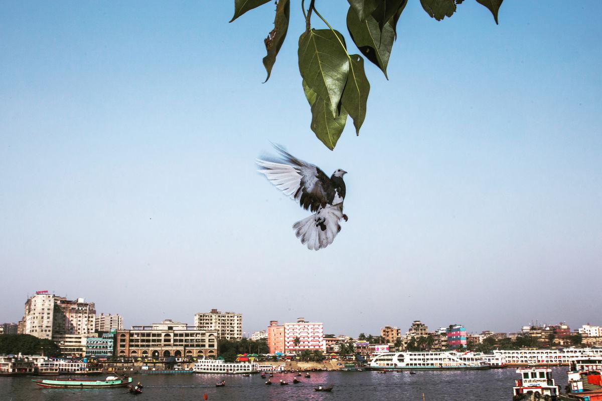 Pranto Nayan 10 Street Photography