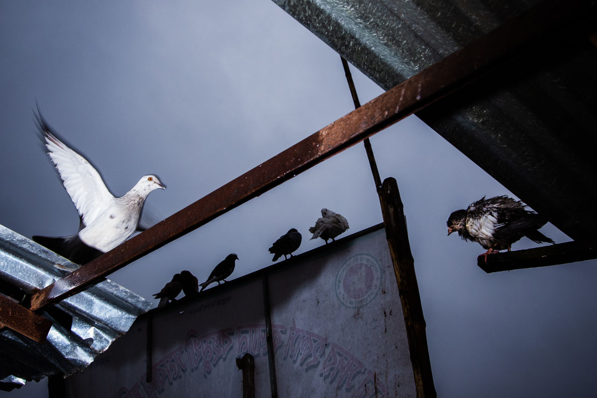 Pranto Nayan 12 Street Photography