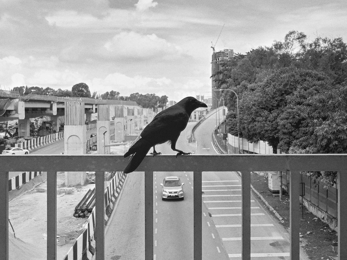 John Rudio 5 Street Photography