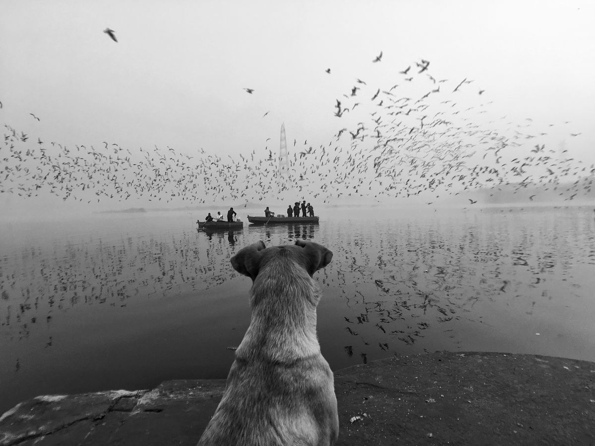 Chetan Sharma 11 Street Photography