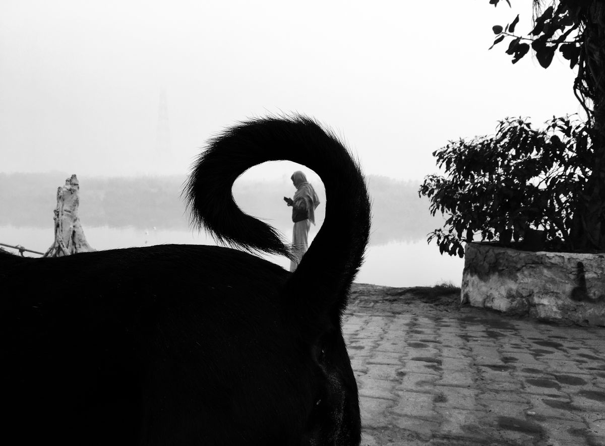 Chetan Sharma 2 Street Photography