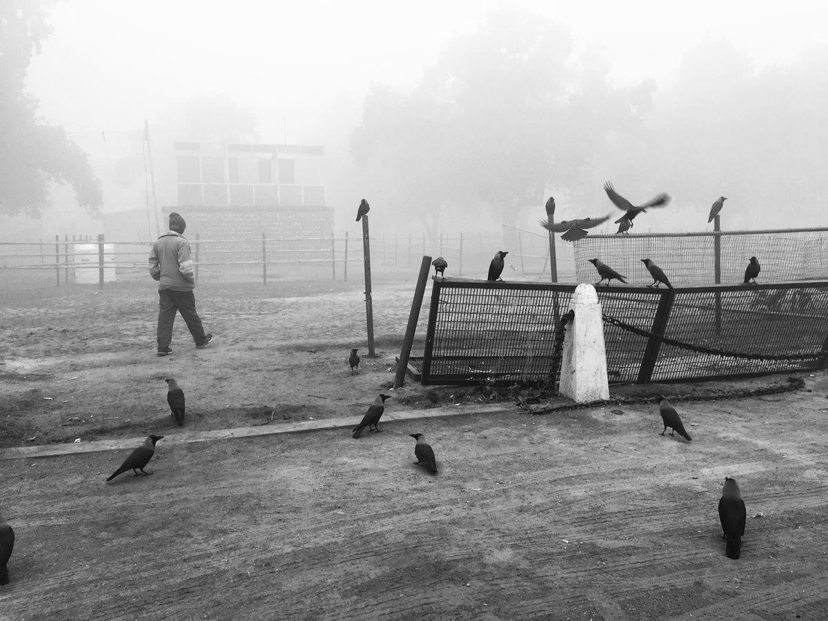 Chetan Sharma 3 Street Photography