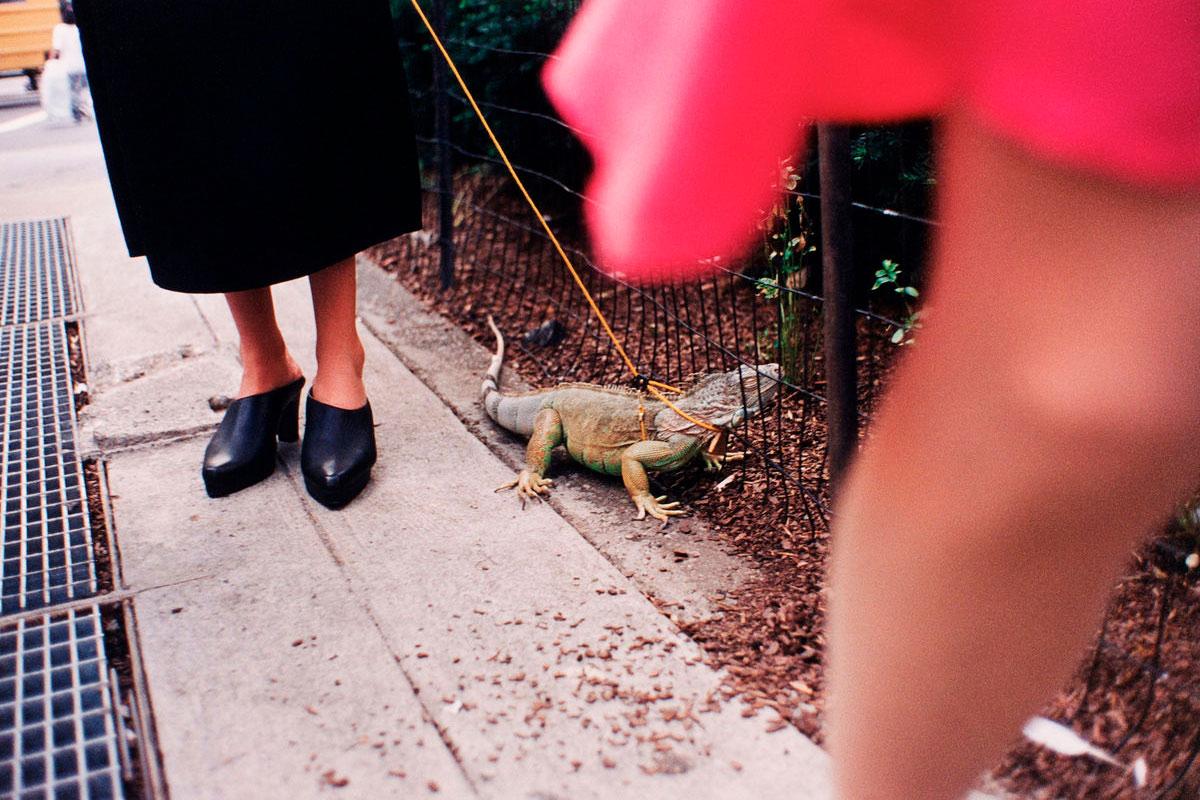 Jeff Mermelstein Street Photography