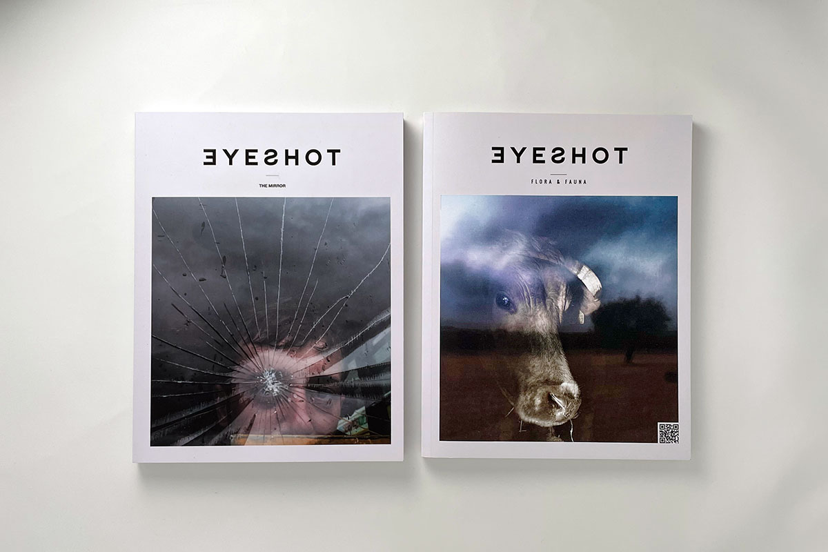 Magazine Bundle Eyeshot