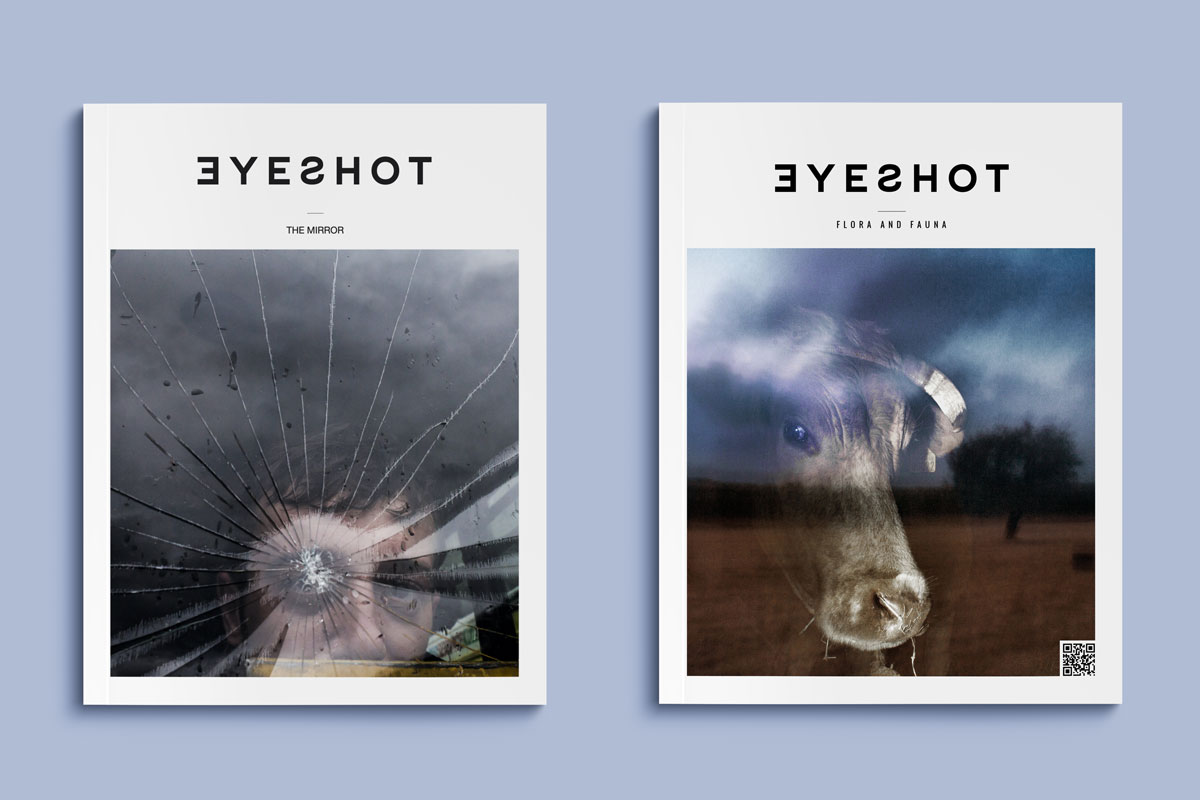 The Mirror Flora Fauna Eyeshot Magazines